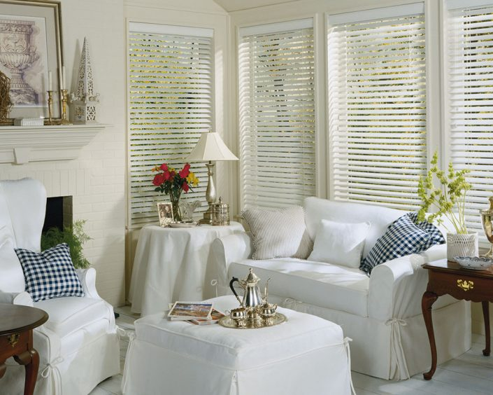 White Family Room Blinds