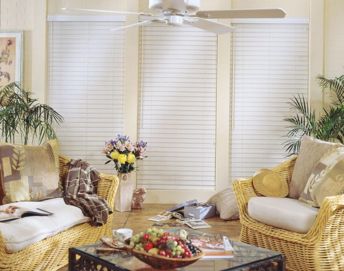 White Faux Blinds